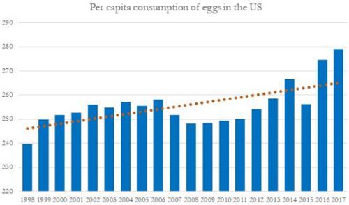 Little Oscar Explains Old Egg Balancing >> Egg News Com Welcome